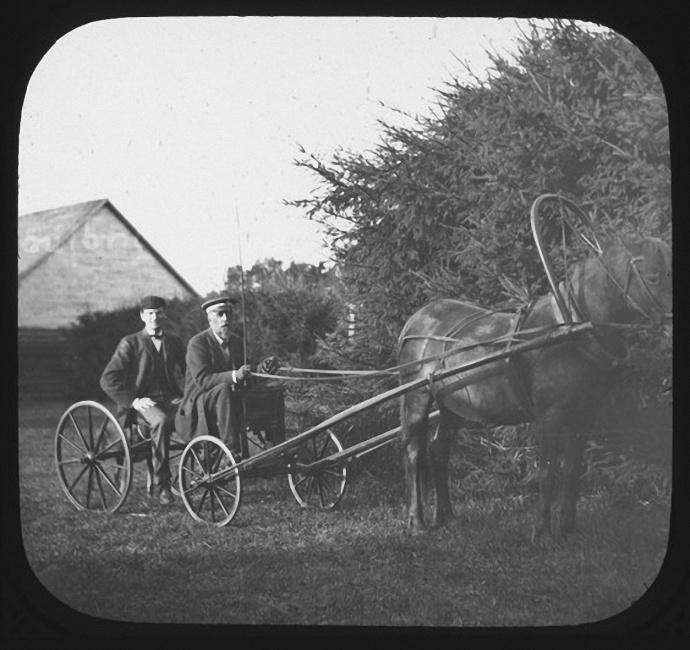 Отец Ячевского управляет телегой. Позади него H.L. Bolley. Лето 1903 года
