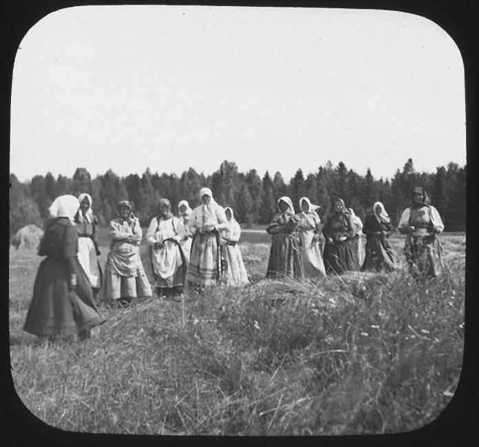 Группа женщин позирует для фотографии во время сбора урожая. Лето 1903 года