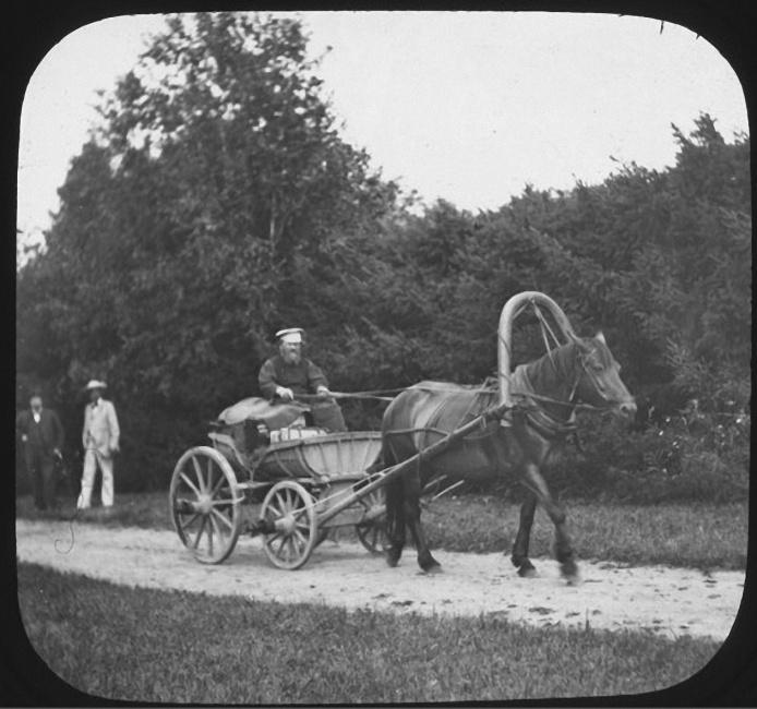 Отец Ячевского управляет телегой. Лето 1903 года